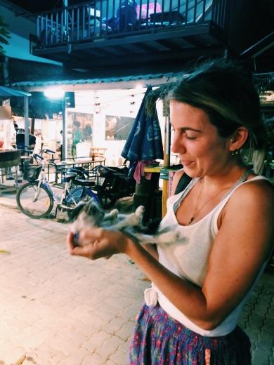 Stray Kitty